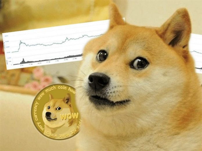 Dogecoin illustration